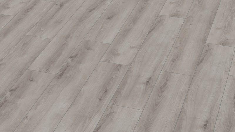 Laminat BoDomo Exquisit Roble Verano Gris Produktbild Musterfläche von oben grade zoom