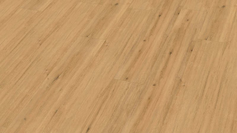 Multilayer BoDomo Premium Modesto Oak Produktbild Musterfläche von oben grade zoom
