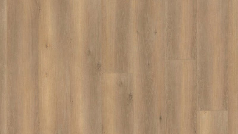 Multilayer BoDomo Premium Salinas Oak Produktbild