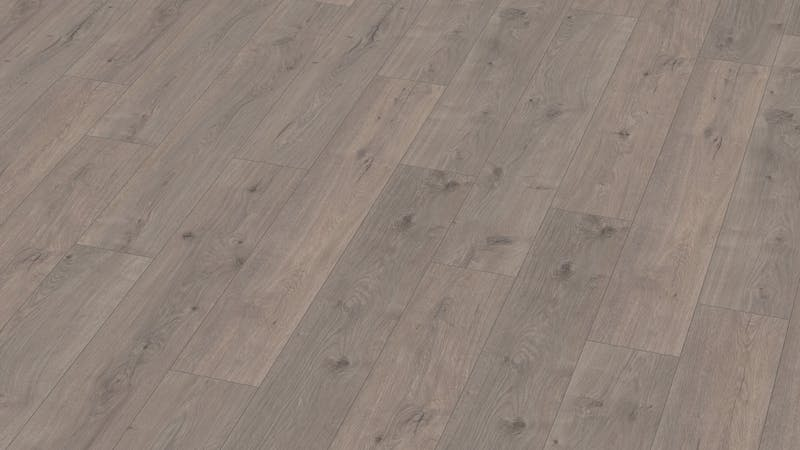 Laminat BoDomo Klassik Tajo Eiche Grau Produktbild Musterfläche von oben grade zoom